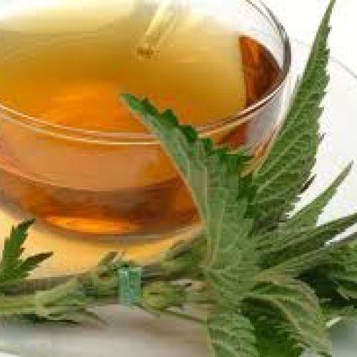 Čaj od lista koprive 50g - Institut Josif Pančić