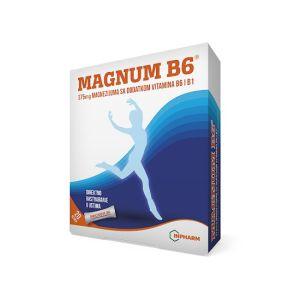 Magnum B6 20 kesica